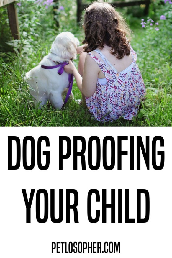 dog proofing your child