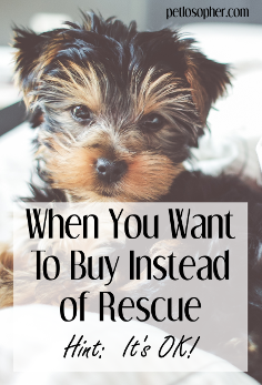 When You Want to Buy Instead of Rescue